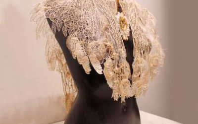 Judith Brown wins Waterhouse Natural Science Art Prize with lace cape creation – The Advertiser