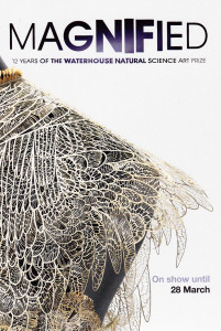 waterhouse-magnified-1
